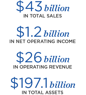 $43 billion in total sales, $1.2 billion in net operating income, $26 billion in operating revenue, $197.1 billion in total assets