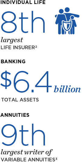 Individual Life: 8th largest Life Insurer; Annuities: 9th largest writer of Variable Annuities