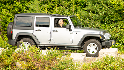 Gray 4-door jeep driving on road surrounded by evergreen trees