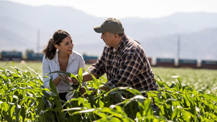 enlaces sobre prevención de riesgos para negocios agrícolas